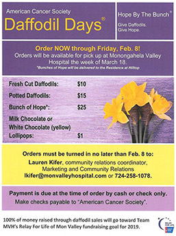 Daffodil Days to support the Relay for Life of Mon Valley flyer