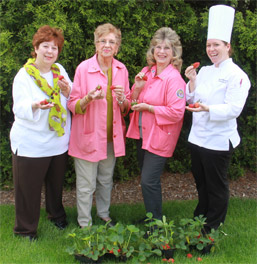 Monongahela Valley Hospital's Auxiliary Prepares for Strawberry Festival photo